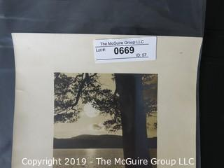 Art: Photograph: Named: Vintage ~'30's? - Moonlight thru the Pines - Richardson; image size 6 x 9""