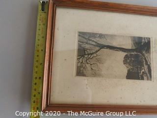 Framed Signed Lithograph of Tree
