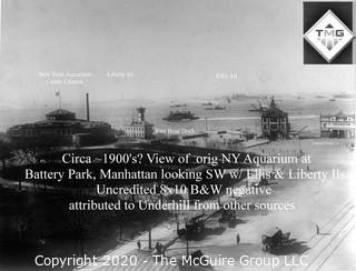 "8 x 10"" Film Negative; Irving Underhill; Battery Park  New York City (0007A)"