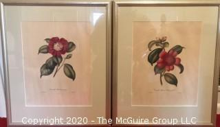 Two Framed Floral Lithographs in Bright Clear Colors.
