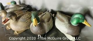 Six Plastic Duck Decoys made by Greenherd Gear.