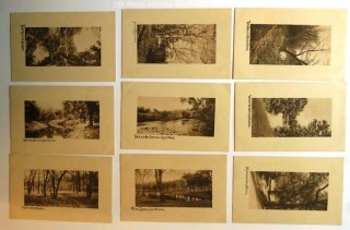 Series of Nine Real Photo Postcards of Pastoral Scenery.  Unposted.