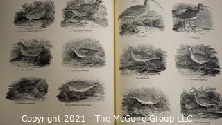 """Books: Collection of 5 books including """"1800 Woodcuts by Thomas Bewick and His School"""", Artist Ben Shahn, Artist and Architect Antonio Gaudi,"""