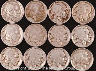 Numismatic:  (12) Buffalo Nickels (1934>1937)