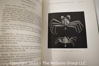 Book: Bulletin of the Vanderbilt Marine Museum, Vol. II - Yacht Journeys
