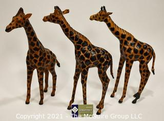 Group of Three Carved Wooden Giraffes.