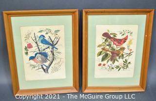 "Pair of Framed Under Glass Botanical & Bird Prints by Arthur Singer.  Each measure 15 x 18"""