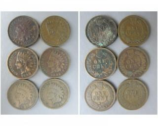 (6) 1898 Indian Head Cents