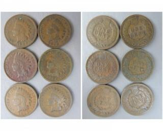 (6) 1895 Indian Head Cents
