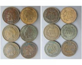 (6) 1899 Indian Head Cents